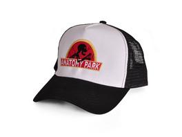 Rick and Morty - Anatomy Park Logo Basecap